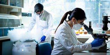 Académico de la U. de Chile encabeza desarrollo de test que permitiría diagnosticar el Alzheimer con muestra de sangre.