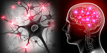 Neurociencia: Cómo envejecer saludablemente en tiempos depandemia.